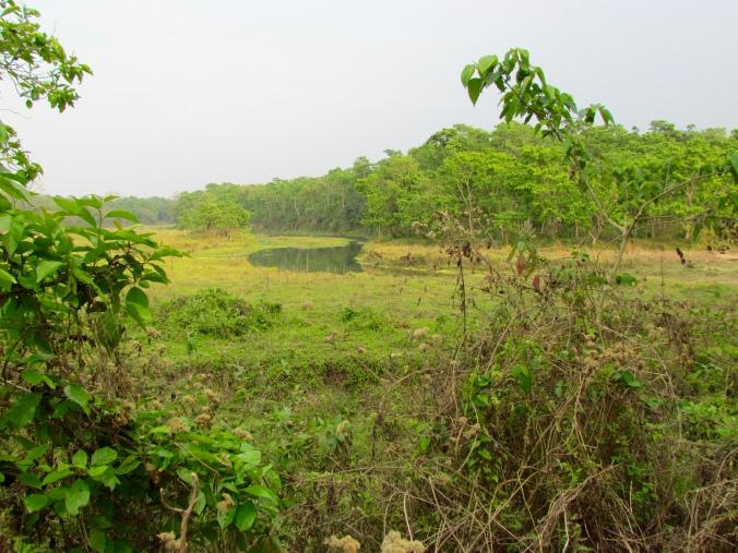 Buddhi Rapati River