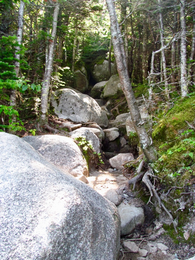 More of the trail